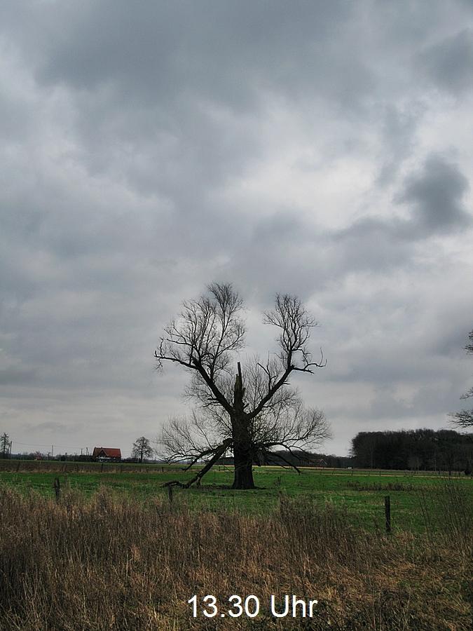 3-Februarwieder GRAU und regnerisch!
