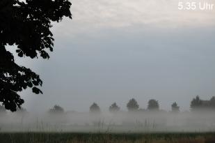 13-Juli wunderschöner MorgenNebel