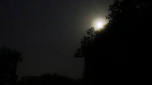 8-September Nachts
