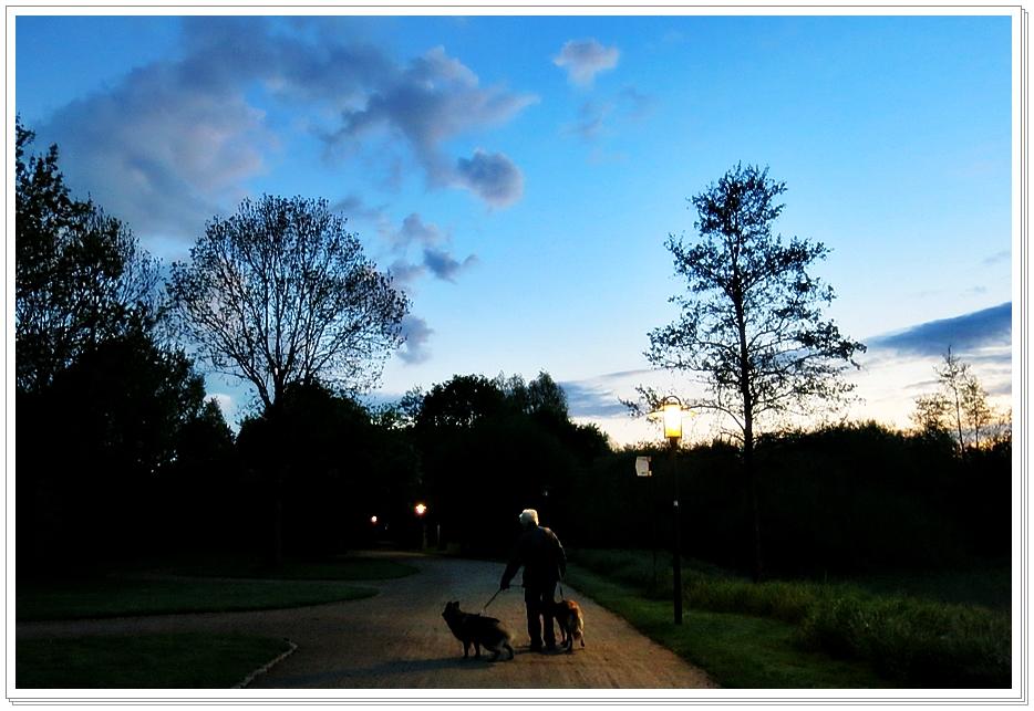 6-Mai 1 Stunde mit den Hunden in der Flora Westfalica