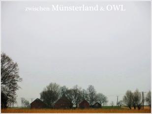 25-März Nähe Batenhorst -- regnerisch